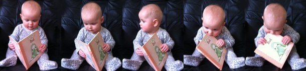 Our little bookworm gobbling up a book!